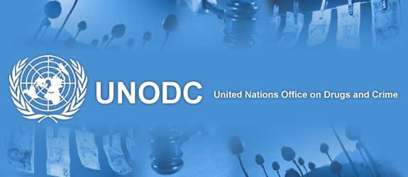 Resultado de imagen para Unodc 2017 oficina de las naciones unidas contra las drogas y el delito
